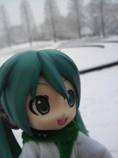 大雪です。