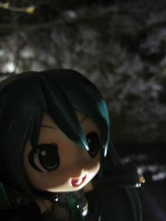 夜桜の上田城。