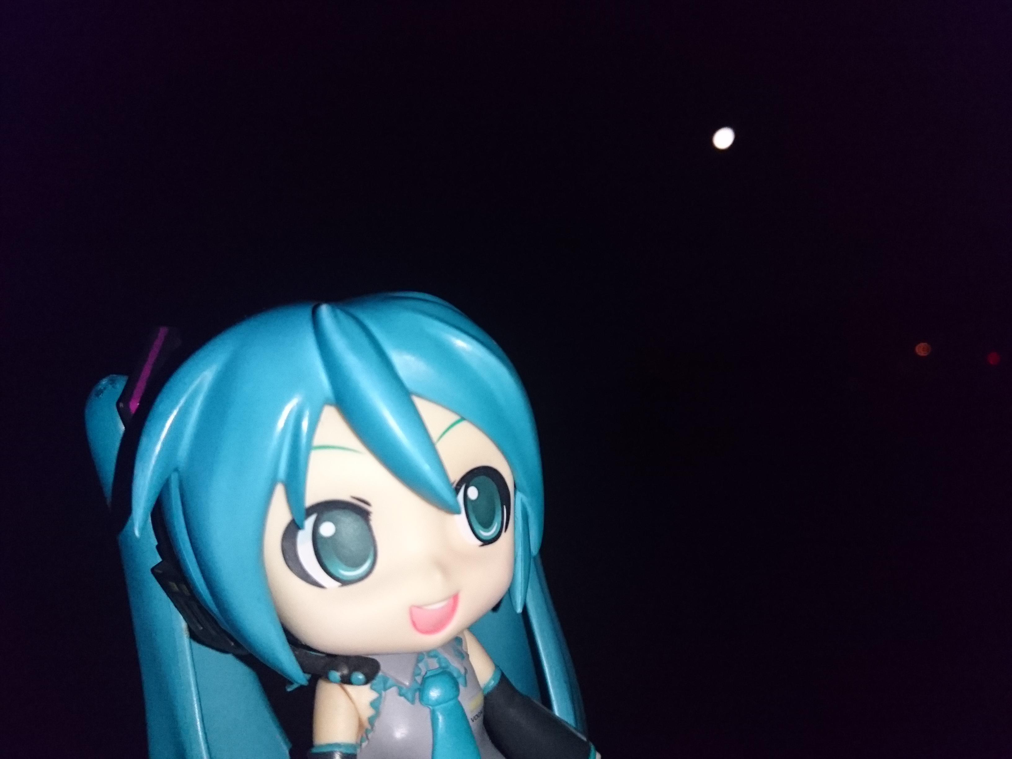 月が綺麗です。