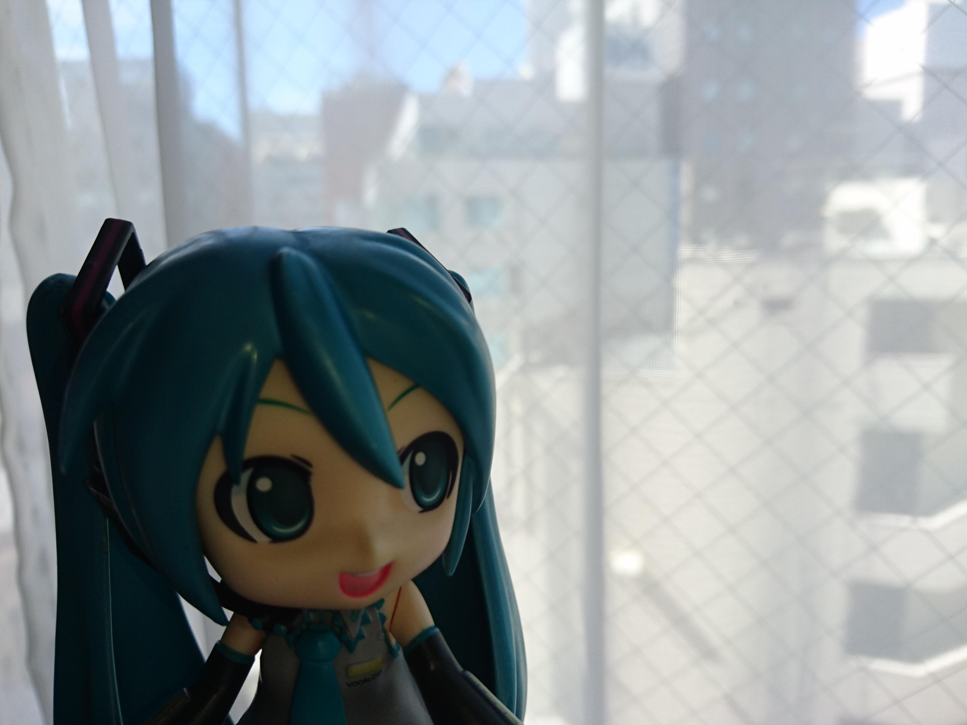 千葉は台風一過の朝。